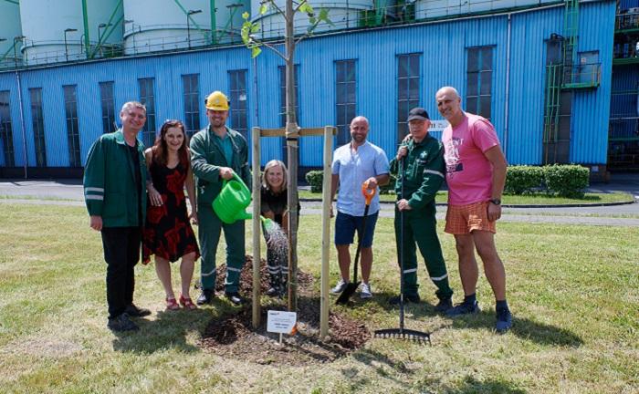 Valmez Tree Planting