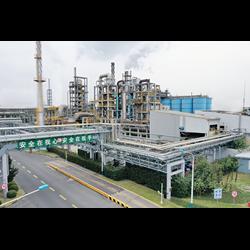 Shanghai plant